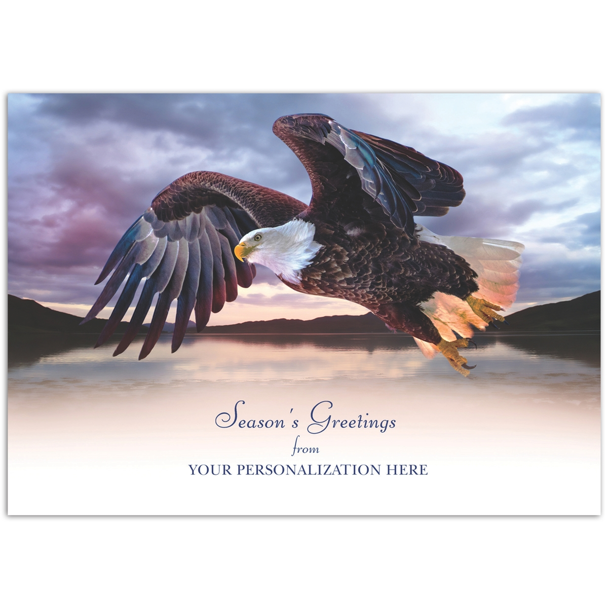 American Bald Eagle Card