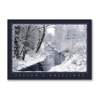 Radiant View Holiday Cards