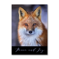 Red Fox Holiday Cards