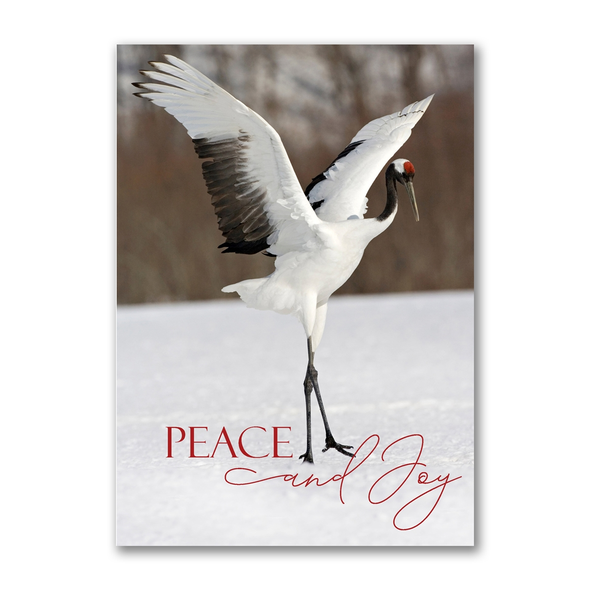 Red-Crowned Crane Holiday Cards