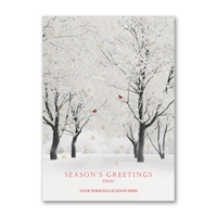Shimmering Trees Holiday Cards