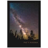 Milky Way Over Trees Card - Spanish